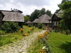 Traditional Romanian houses-check out the roof!