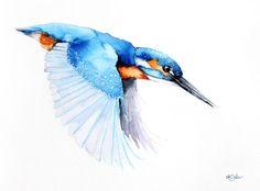 Kingfisher in fly-Original watercolors