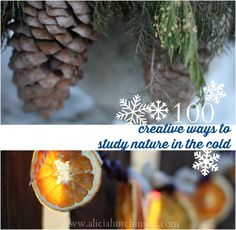 The winter weather is upon us. But being colder doesn't mean we can't still have winter nature study! Here's 100 awesome ideas for winter nature study!