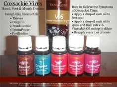 Essential oils to treat Coxsackie Virus- Hand, Foot Mouth Disease Essential Oils 101, Essential Oil Blends, Young Living Oils, Young Living Essential Oils, Arthritis, Hand Foot And Mouth, Frankincense Oil, Yl Oils, Eos