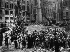 The Hard-Working Italian Origins of the Rockefeller Center Christmas Tree - The New York Times