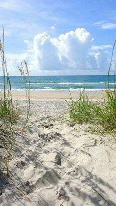 Beach ocean sea