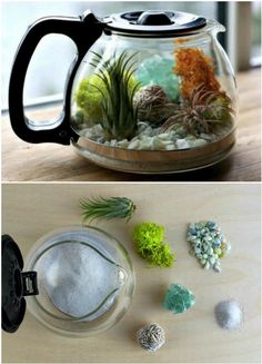 Coffee Pot Planters Coffee and tea pots can be turned into the most adorable terrariums. Put them on a window sill or in your coffee nook.Here's the link to the tutorial >> DIY Coffee Pot Terrarium Learn how to make a terrarium coffee pot quickly and