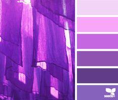 Hanging hues - design seeds purple tones