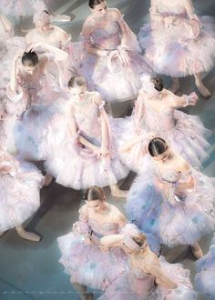 Ballerina Clipart: The Lightness and the Royal Beauty of Ballet Dancers in The Collection of Paintings and Illustrations of Ballerinas. Ballet Art, Ballet Dancers, Grands Ballets Canadiens, La Bayadere, Templer, Pretty Ballerinas, Photo D Art, Ballet Photography, Tiny Dancer