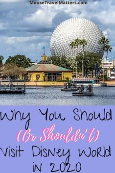 Why You should or shouldn't visit Disney World in 2020. There are a number of things one needs to consider before making any decisions.