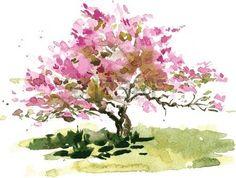 aquarelle: fleur de cerisier dessin de l'arbre par l'aquarelle, aquarelle croquis de floraison pommier, jardin peinture, dessinés à la main vecteur fond l'art