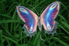Butterfly  via  Diana Presley