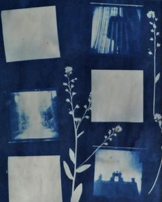 "A cyanotype is created by mixing 8.1% potassium ferricyanide and 20% ferric ammonium citrate. The substance is sensitive to light. I then paint a surface with that concoction and lay objects on top of the paper. The shadows created by those objects leave a pattern. Each cyanotype is a one-of-a-kind hand crafted work of art.    This cyanotype is 8"" x 10"" in size. It is matted to an overall size of 11x14. It comes with the mat, backing, and a plastic bag which encloses them all."