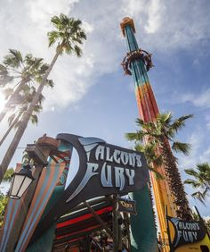 Awesome Best Rides At Busch Gardens Tampa   Falconu0027s Fury Photo