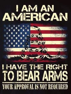 The Right To Bear Arms Is A Human Right Protected By Our Constitution.