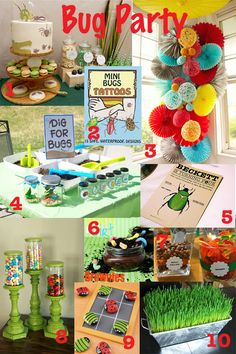 An inspiration board of ideas for a bug birthday party.  @INDI Design Lung Gill i LOVE this idea for Charlie!!