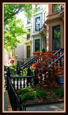 Brooklyn Brownstones by Brooklyn Bridge Baby, via Flickr