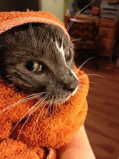 Just wait until this towel is off me!!