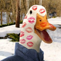St. Valentines Day. ...AFLAC!