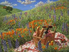 One day i will have a picnic with my fiance, and then use the flowers in the feild for my wedding :)