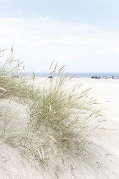 Amalie loves Denmark – Google+