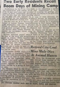 Newspaper article from Paula's grandma.
