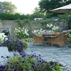 Great lattice fence - perfect for privacy and growing roses on