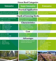 Green roof categories