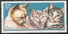 Romania cats stamp Art Postal, Japanese Cat, Image Cat, Stamp Collecting, Cat Art, Postage Stamps, Romania, Mammals, Cute Cats