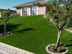 front-garden-belgium