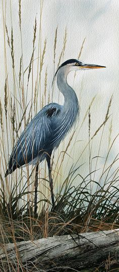 Natures Gentle Stillness Painting
