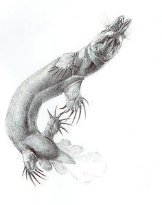 Odd swimmer by Exobio.deviantart.com on @DeviantArt