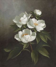 Susie Philipps: Still Life and Flower Paintings   Portrait Commissions