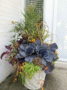 new fall containers - Flowers - Gardening - Arrangements - Floral Design - Bouquets - Container Gardening - Living Bouquets Winter Planter, Fall Planters, Flower Planters, Fall Potted Plants, Ivy Plants, Fall Flower Pots, Fall Flowers, Purple Flowers, Fresh Flowers