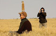 Botswana, South Africa & Zambia - http://www.tauck.com/tours/africa-tours/south-africa-tours-bw-2014.aspx