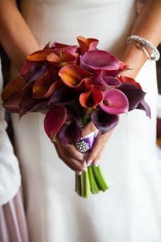 Loved my wedding bridal bouquet! #wowfloraldesigbstudio #studiochambers photography