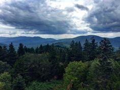 Happy little trees in the Smoky Mountains.     #adventuretravel #campvibes #doyoutravel #darlingmoment #explorewildly #exploremore #goseetheworld #hiking #hikingadventures #hikingtrails #igtravel #lonelyplanet #lovetheworld #letsgosomewhere #livetravelchannel #mountainside #morningslikethese #natgeo #openmyworld #ourplanetdaily #persuepretty #roamtheplanet #stayandwander #tlpicks #traveldeeper #wanderlust #smokymountains #rei1440project #travelblogs #naturelovers by lifenbtween