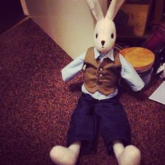 18 Best Luna Lapin Images Bunny Hare Bunnies