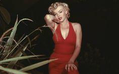 marilyn monroe | Marilyn Monroe