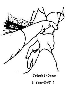 tekubiosae.jpg (357×442) (tekubi=collo della mano (polso))