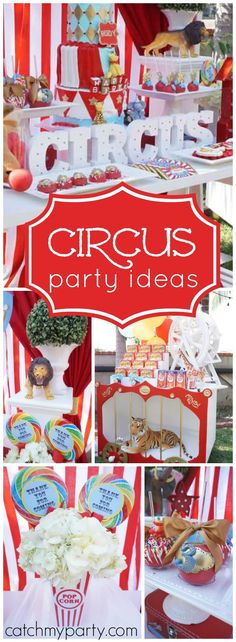 You need to see this circus party with lots of animals and vibrant colors! See more party ideas at Catchmyparty.com!