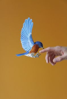 - Des oiseaux en papier - Juste sublime!  http://www.dianabeltranherrera.com/projects.html