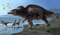Acrocanthosaurus by Jaime Chirinos. I'm used to seeing images of slimmer looking Acrocanthosaurus, but who knows. It could have been relatively bulky like this!