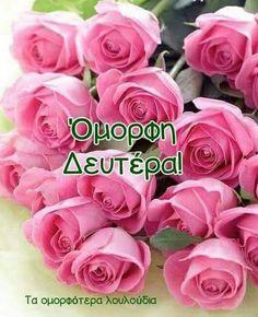 Birthday Wishes Flowers, Happy Anniversary, Birthdays, Happy Birthday, Rose, Party, Holiday, Pink, Humor