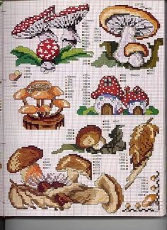 Selection of Mushroom Designs (duplicate??)