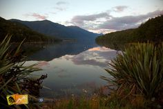 Evening at lake Monowai in Fiordlands. South Island, New Zealand. http://www.thephotograph.co.nz/ http://www.thephotograph.co.nz/photo-galleries/south-island/