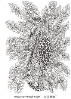 Hand Drawn Peacock With Ethnic Floral Doodle Pattern Coloring Page