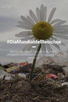 Es importante reciclar #DïaMundialDelReciclaje.