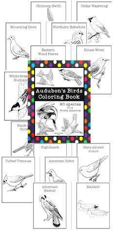Bird coloring book. :)
