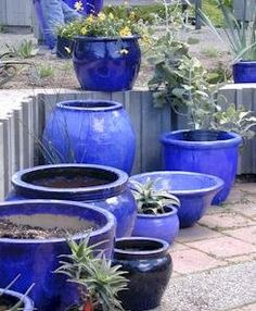 More blue pots!  I want them all, but especially that tall urn in the corner.  I love urn-type pots and they're kind of hard to find.