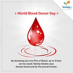 By donating just one Pint of Blood, up to 3 lives can be saved. ‪#‎RamkyEstates‬ says ‪#‎DonateBlood‬ and be the proud human.