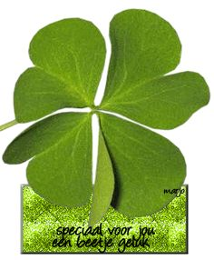 Leaf Quotes, Good Relationship Quotes, Love Energy, Get Well Soon, Luck Of The Irish, Change Is Good, Love And Light, Hello Everyone, Life Is Beautiful