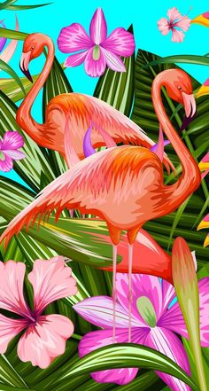 Wallpaper iPhone - Best of Wallpapers for Andriod and ios Flamingo Wallpaper, Cute Wallpaper Backgrounds, Screen Wallpaper, Cute Wallpapers, Cool Wallpaper, Iphone Wallpaper, Flamingo Painting, Flamingo Art, Huawei Wallpapers