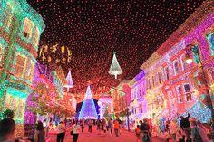 Lights at Disney Hollywood Studios...and the magic continues!